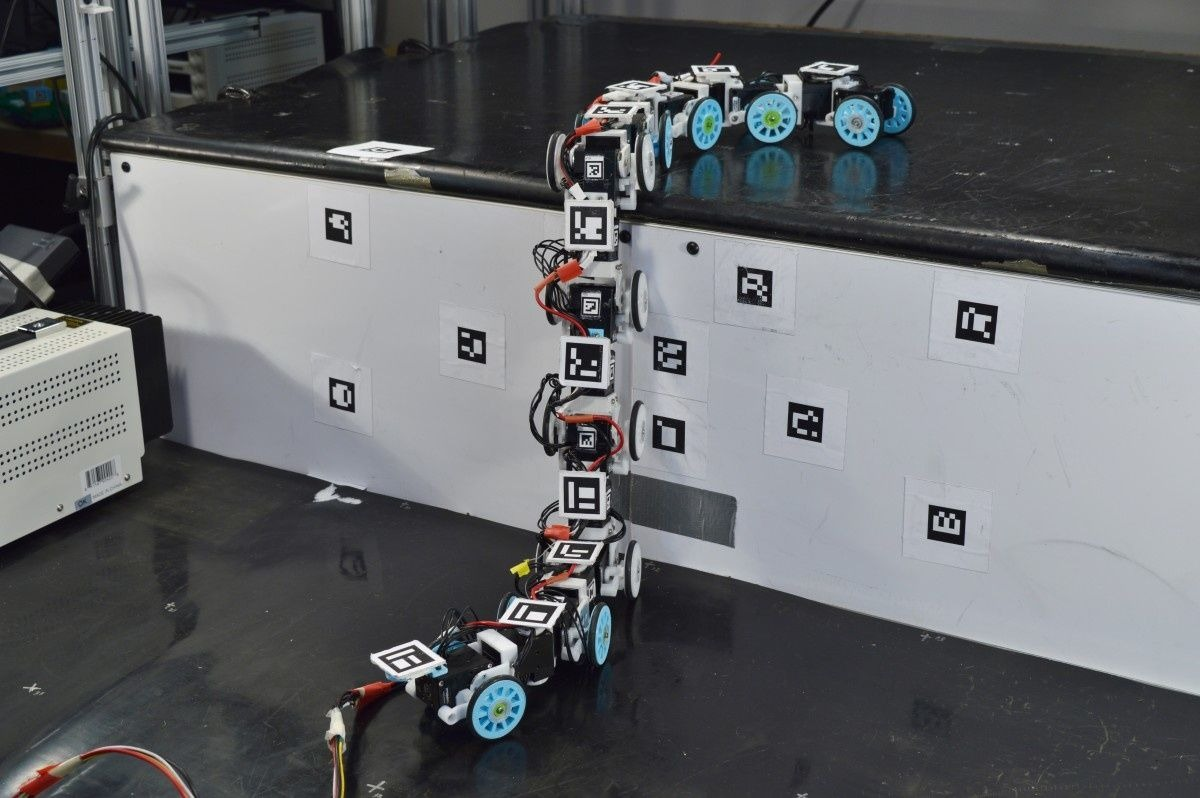 Le robot-serpent en action.